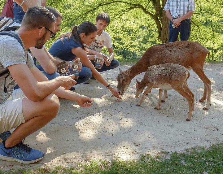 Tierparks In Rheinland Pfalz